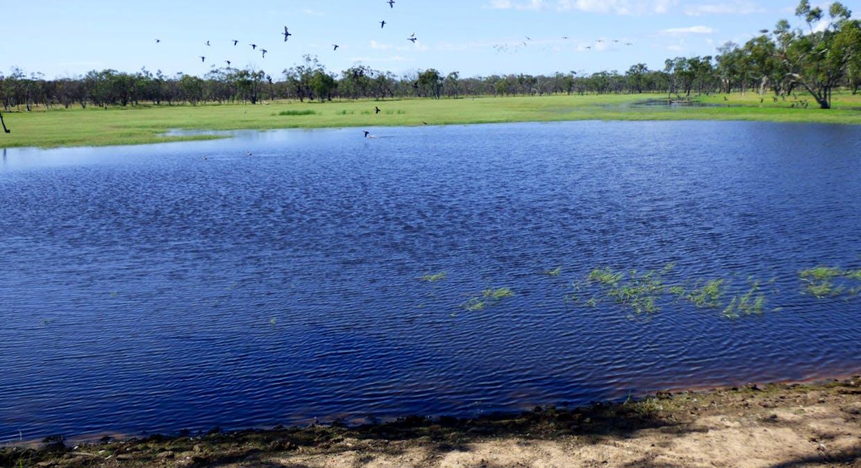 Charleville, QLD, 4470 - Image 2