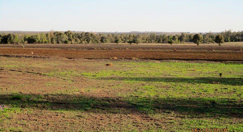 602 Acres Grazing, Jandowae, QLD, 4410 - Image 17