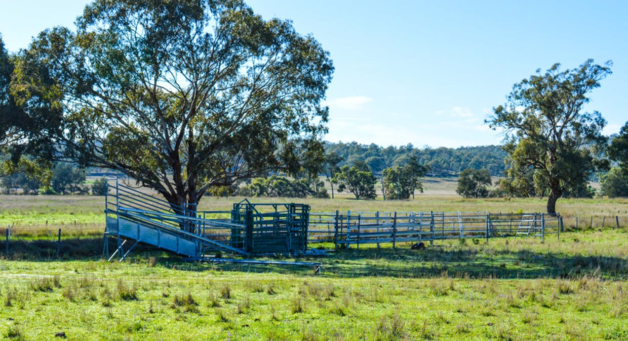 72 Connolly Dam Road, Silverwood, QLD, 4370 - Image 8