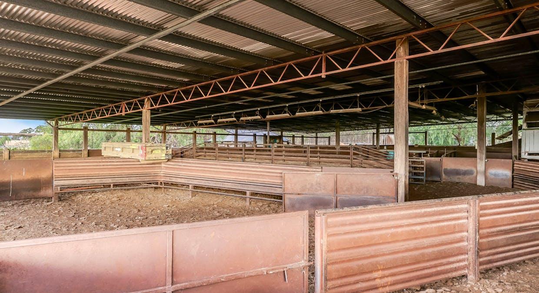 500 Terrica Road, Terrica, QLD, 4387 - Image 27