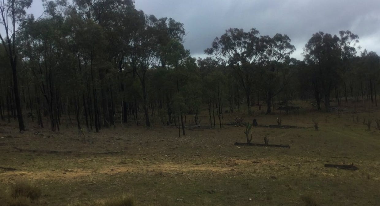 Hazeldene Road, Thanes Creek, QLD, 4370 - Image 3