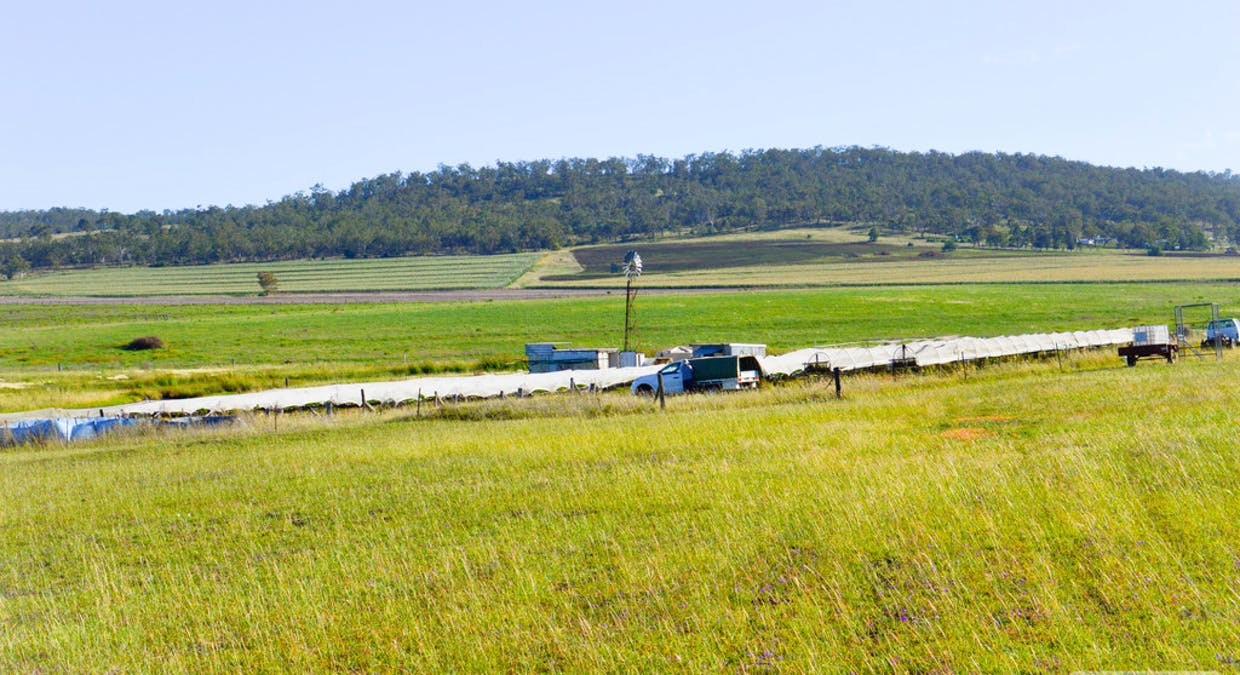 Lot 300 Cunningham Highway, Womina, QLD, 4370 - Image 1