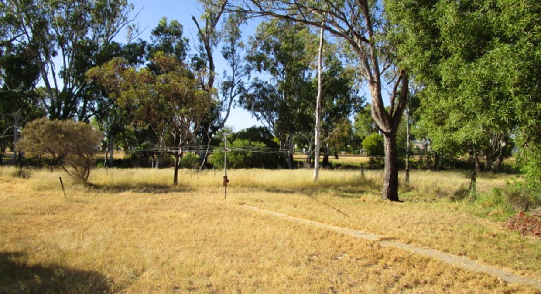 5100 Condamine-Meandarra Rd, Meandarra, QLD, 4422 - Image 20