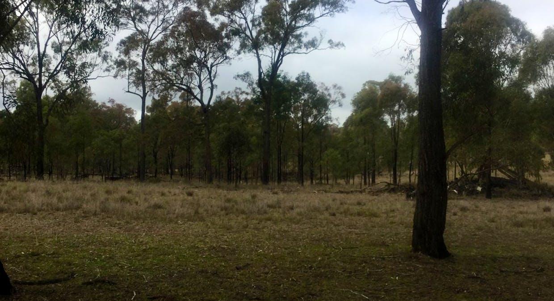 Hazeldene Road, Thanes Creek, QLD, 4370 - Image 4