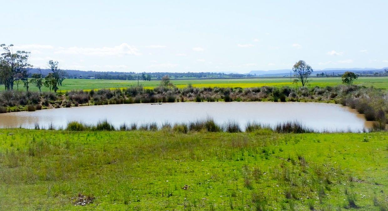 270 Blacksoil Lane, Upper Wheatvale, QLD, 4370 - Image 15