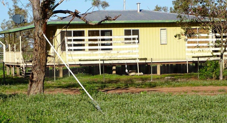 Cunnamulla, QLD, 4490 - Image 13