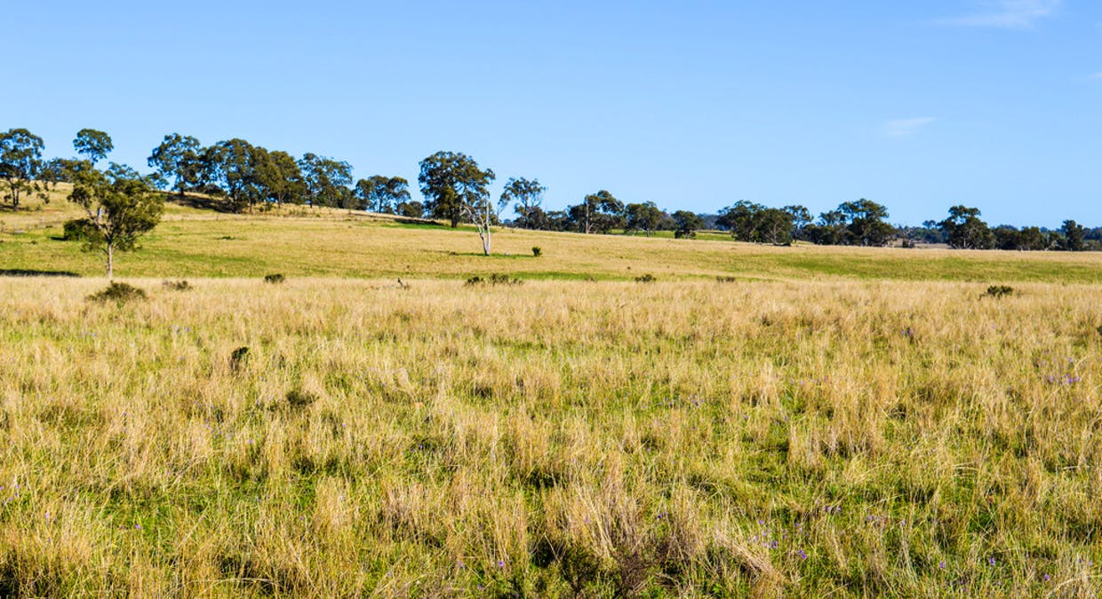 72 Connolly Dam Road, Silverwood, QLD, 4370 - Image 6