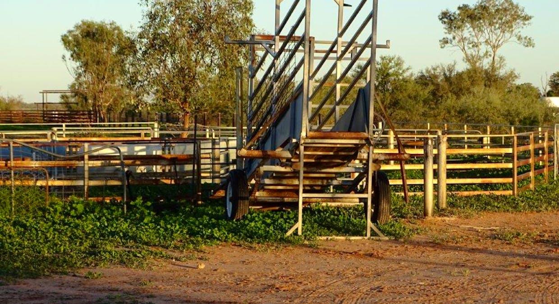 Cunnamulla, QLD, 4490 - Image 5