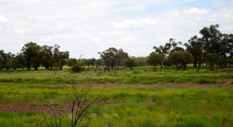 Cunnamulla, QLD, 4490 - Image 7
