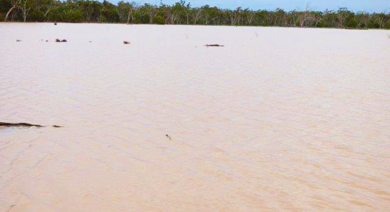 Charleville, QLD, 4470 - Image 25