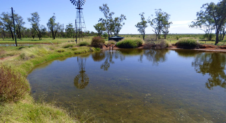 Charleville, QLD, 4470 - Image 5