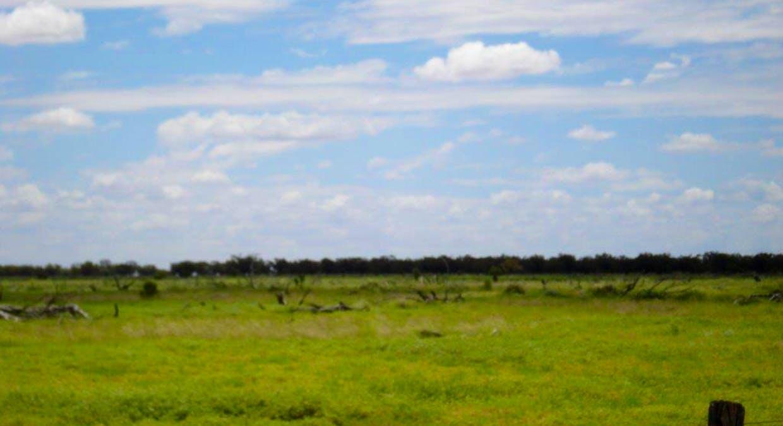 Cunnamulla, QLD, 4490 - Image 9