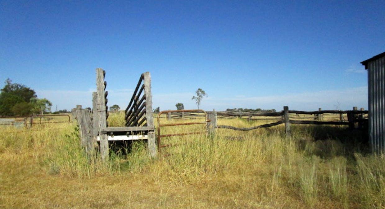 5100 Condamine-Meandarra Rd, Meandarra, QLD, 4422 - Image 28