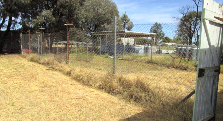 LOT 518 Sara Street, Meandarra, QLD, 4422 - Image 15