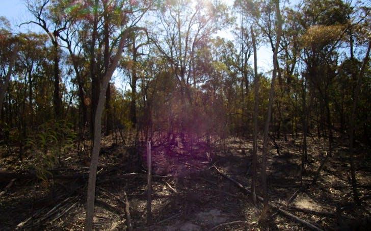 LOT 51 Arnolds Road, Tara, QLD, 4421 - Image 1