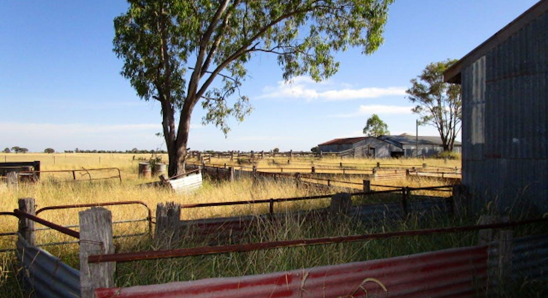 5100 Condamine-Meandarra Rd, Meandarra, QLD, 4422 - Image 26