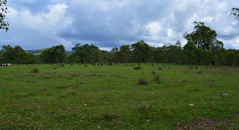Morgan Park Rd, Wildash, QLD, 4370 - Image 5
