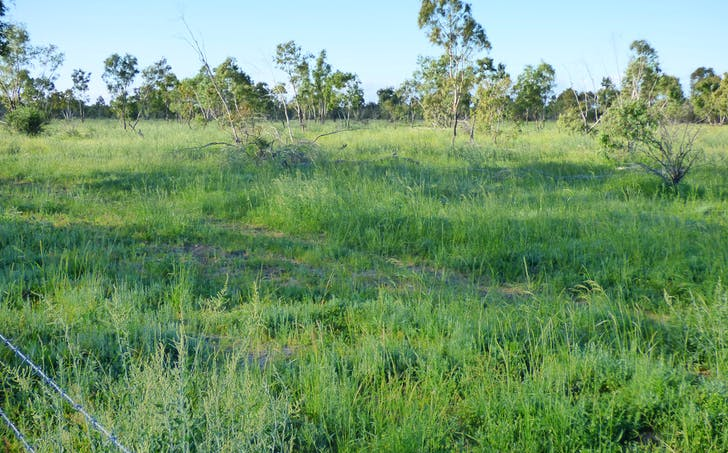 Charleville, QLD, 4470 - Image 1
