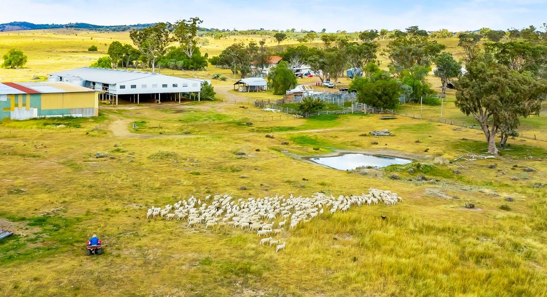 500 Terrica Road, Terrica, QLD, 4387 - Image 4