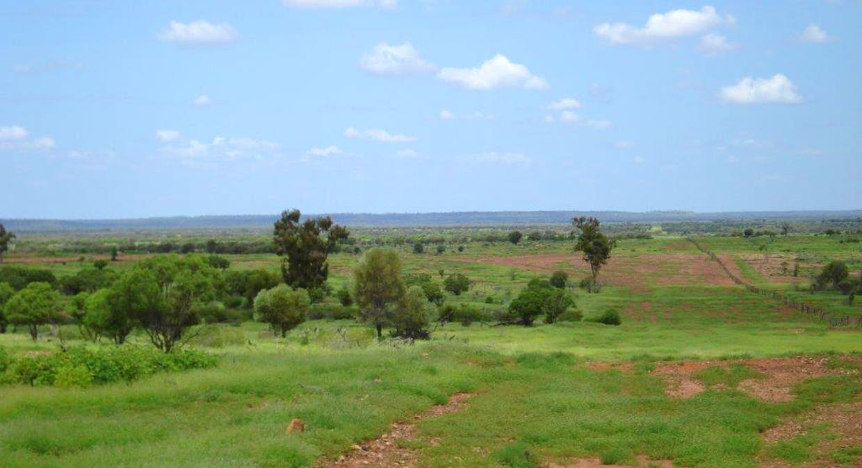 Cunnamulla, QLD, 4490 - Image 1