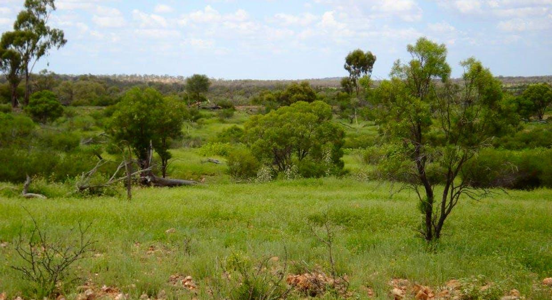 Cunnamulla, QLD, 4490 - Image 2