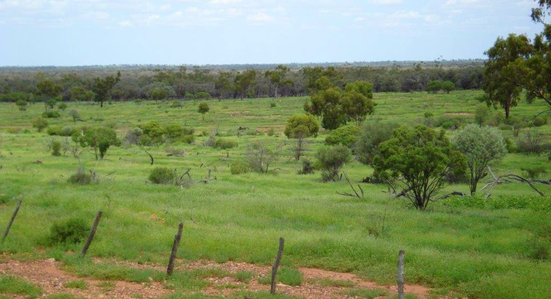 Cunnamulla, QLD, 4490 - Image 4