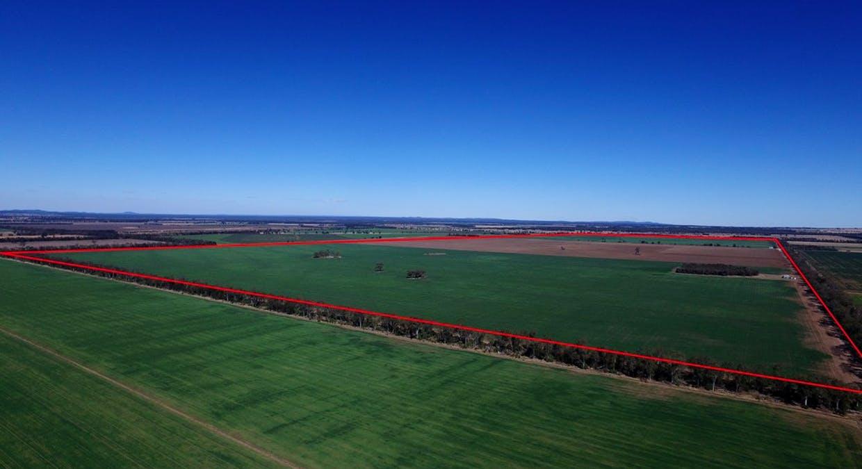 Campbells Road, Punchs Creek, QLD, 4357 - Image 5