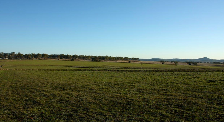 Lot 2 Mcgrath Road, Linthorpe, QLD, 4356 - Image 8