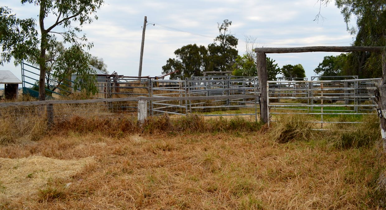 656 Acland - Silverleigh Road, Greenwood, QLD, 4401 - Image 22