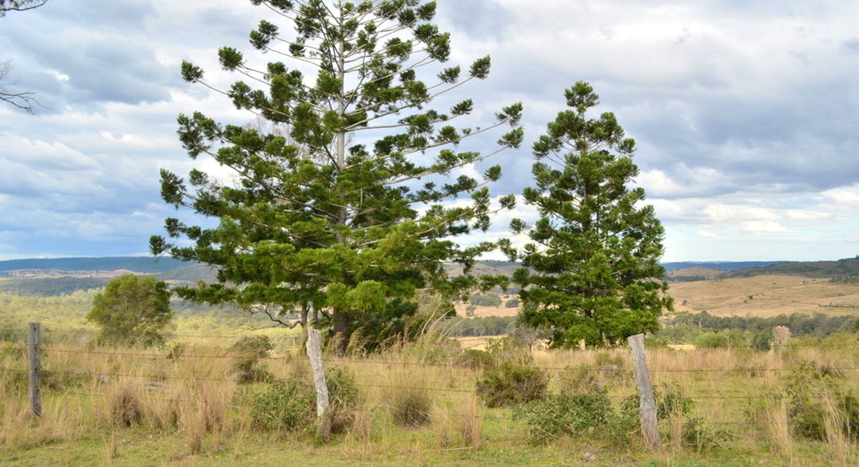 Garskes Road, East Cooyar, QLD, 4353 - Image 1