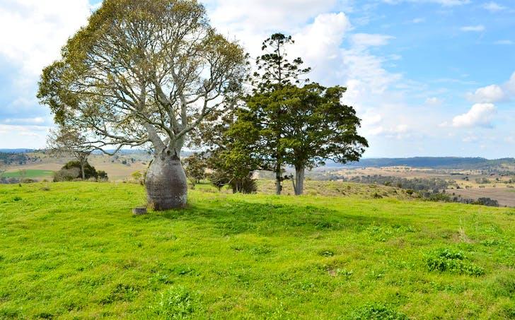 70 Thornville Range Road, Thornville, QLD, 4352 - Image 1