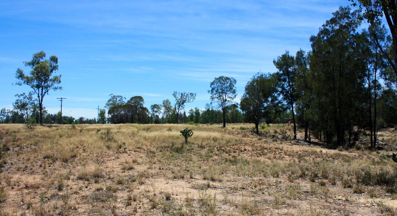 Lot 3 Caliguel Street, Condamine, QLD, 4416 - Image 4