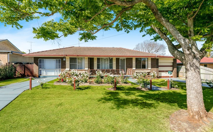 24 Orchid Street, Centenary Heights, QLD, 4350 - Image 1