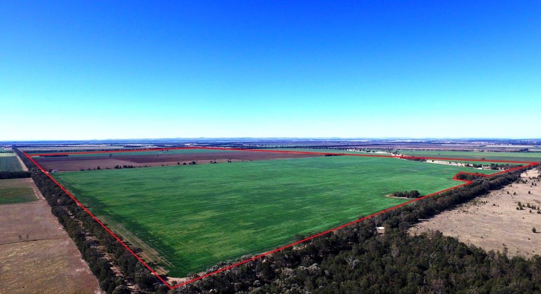 Campbells Road, Punchs Creek, QLD, 4357 - Image 1