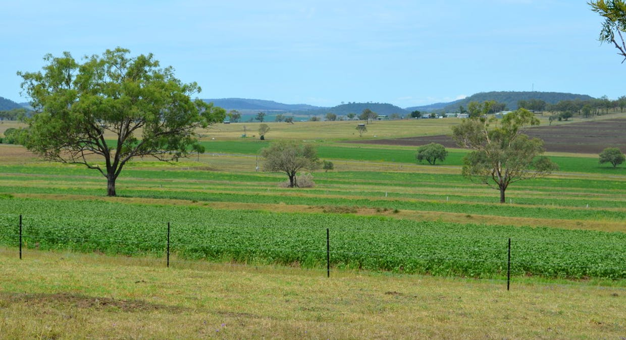 1168 Cudmore Road, Nobby, QLD, 4360 - Image 6