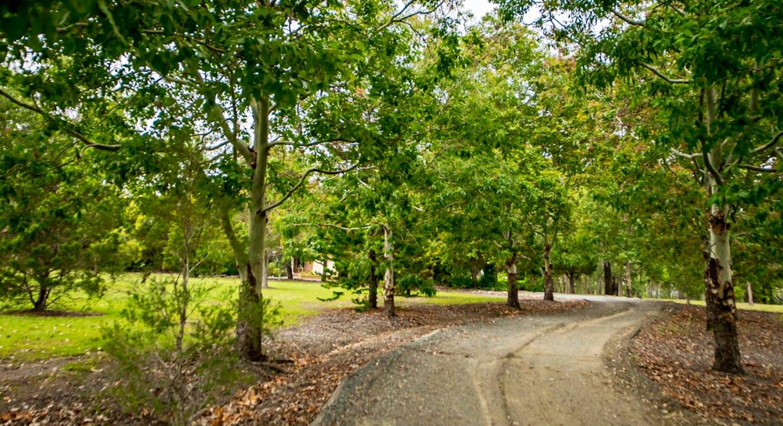 6430 Bucketts Way, Tinonee, NSW, 2430 - Image 24