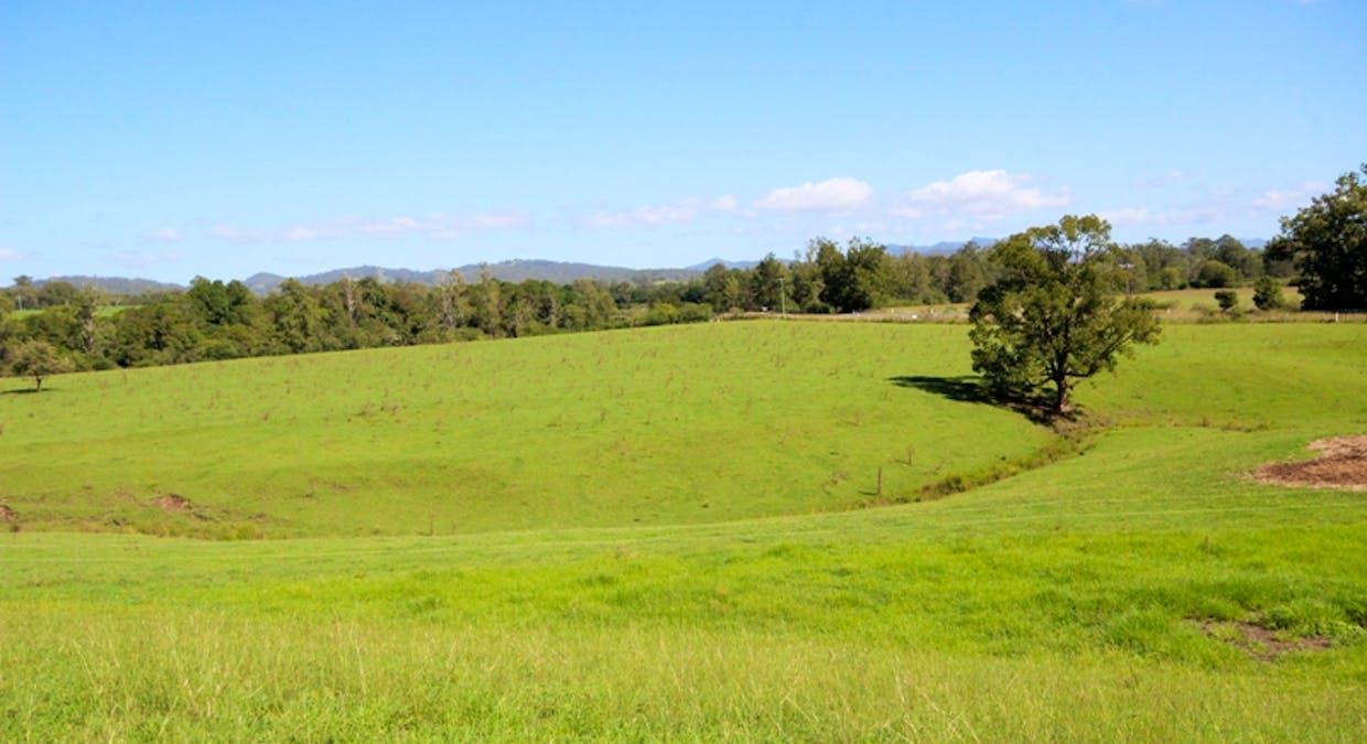 1116 Gloucester Road, Wingham, NSW, 2429 - Image 21
