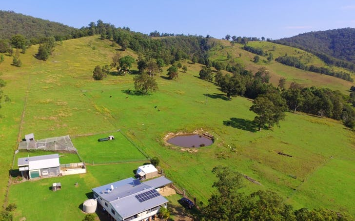 137 Mount Pleasant Road, Wherrol Flat, NSW, 2429 - Image 1