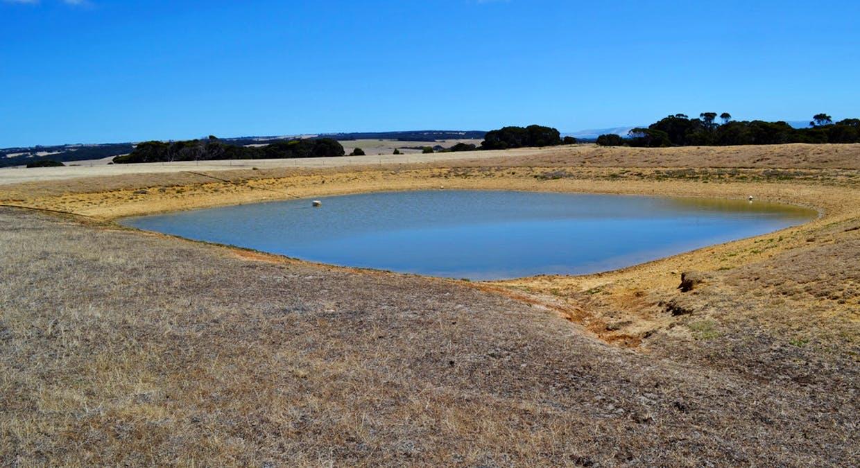 1870 Willson River Road, Porky Flat, SA, 5222 - Image 14