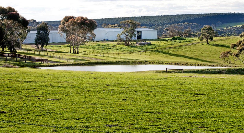 Cygnet Park Farms, Cassini, SA, 5223 - Image 2