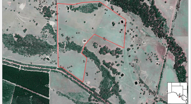 Lot 51 Bark Hut Road, Cassini, SA, 5223 - Image 7