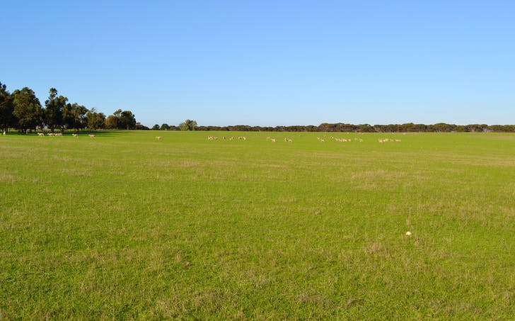 Lot 51 North Coast Road, Wisanger, SA, 5223 - Image 1