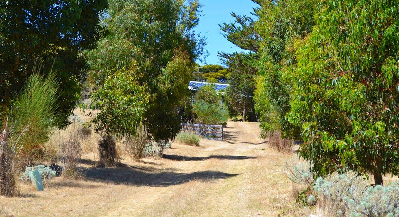 1870 Willson River Road, Porky Flat, SA, 5222 - Image 6