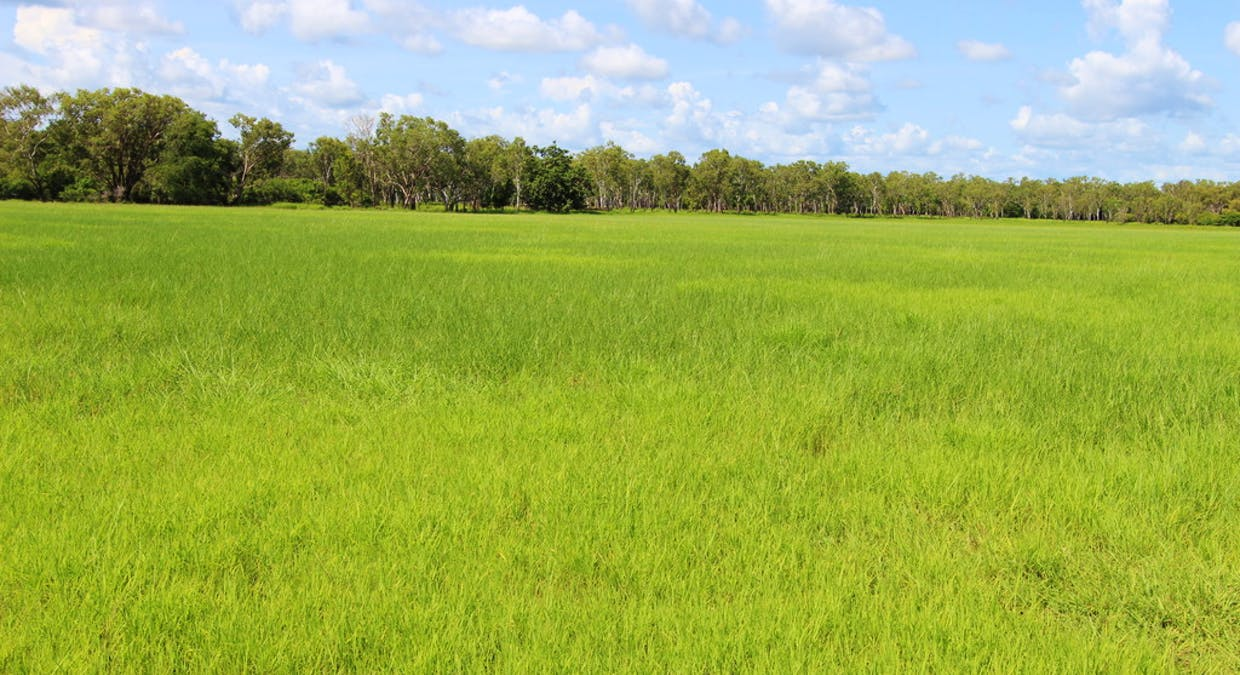 980 Wooliana Rd, Daly River, NT, 0822 - Image 16