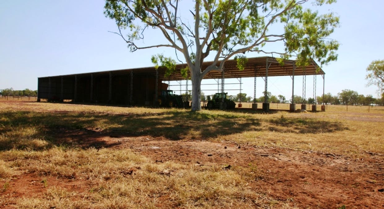Carbeen Park - Image 15