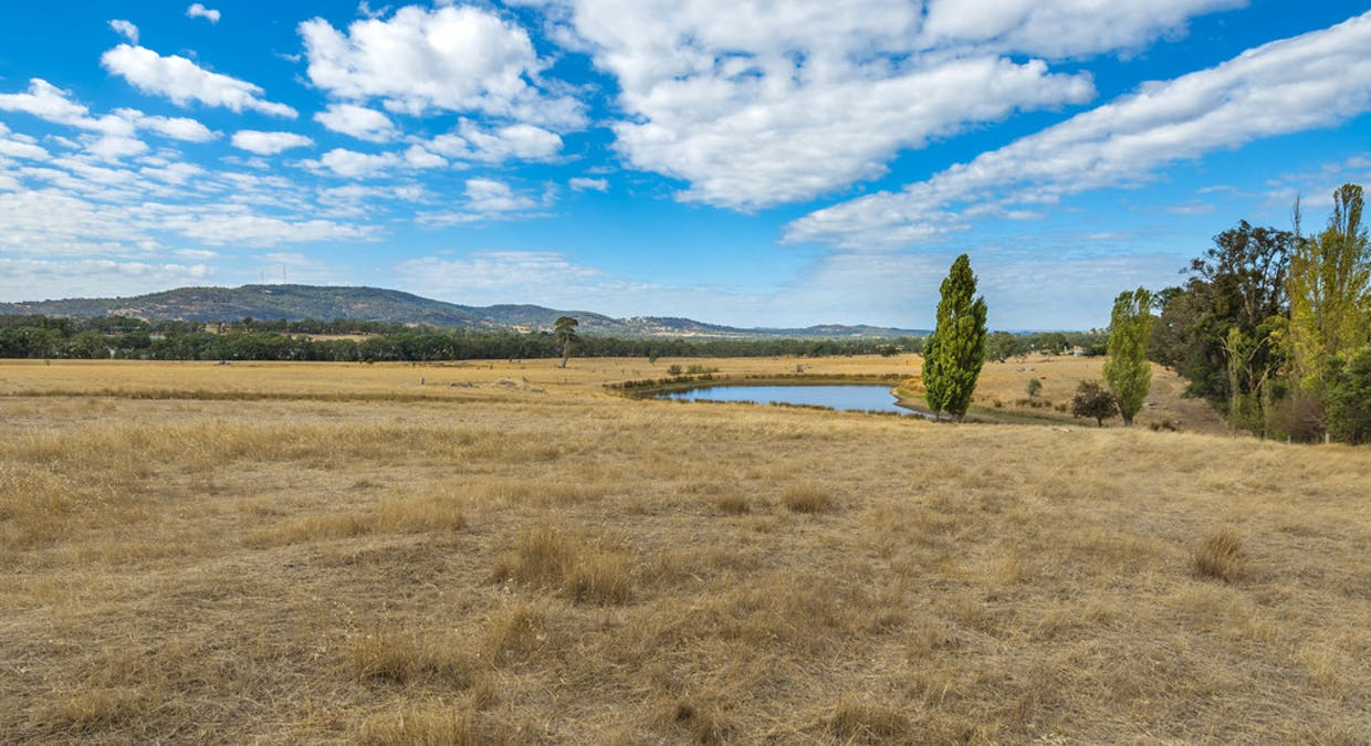 44 Franklings Rd, Harcourt North, VIC, 3453 - Image 16
