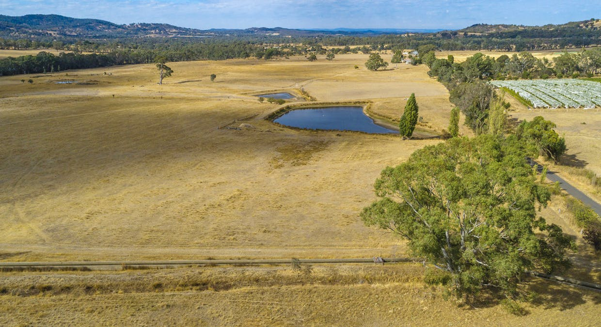 44 Franklings Rd, Harcourt North, VIC, 3453 - Image 9