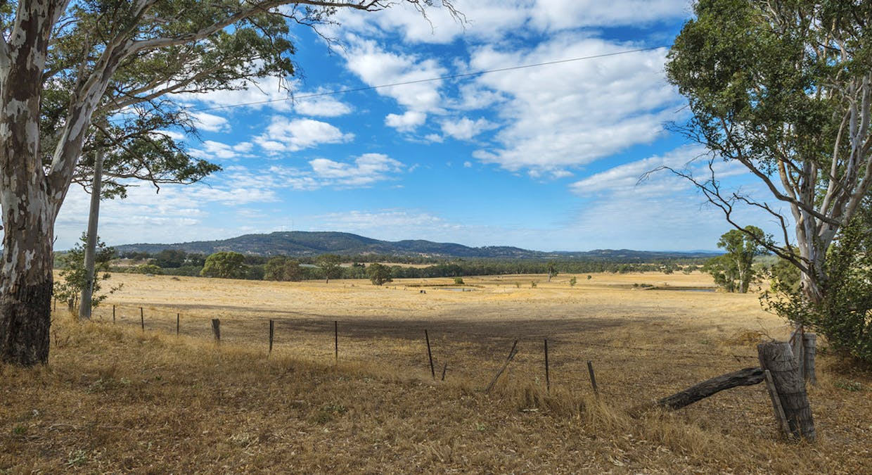 44 Franklings Rd, Harcourt North, VIC, 3453 - Image 13