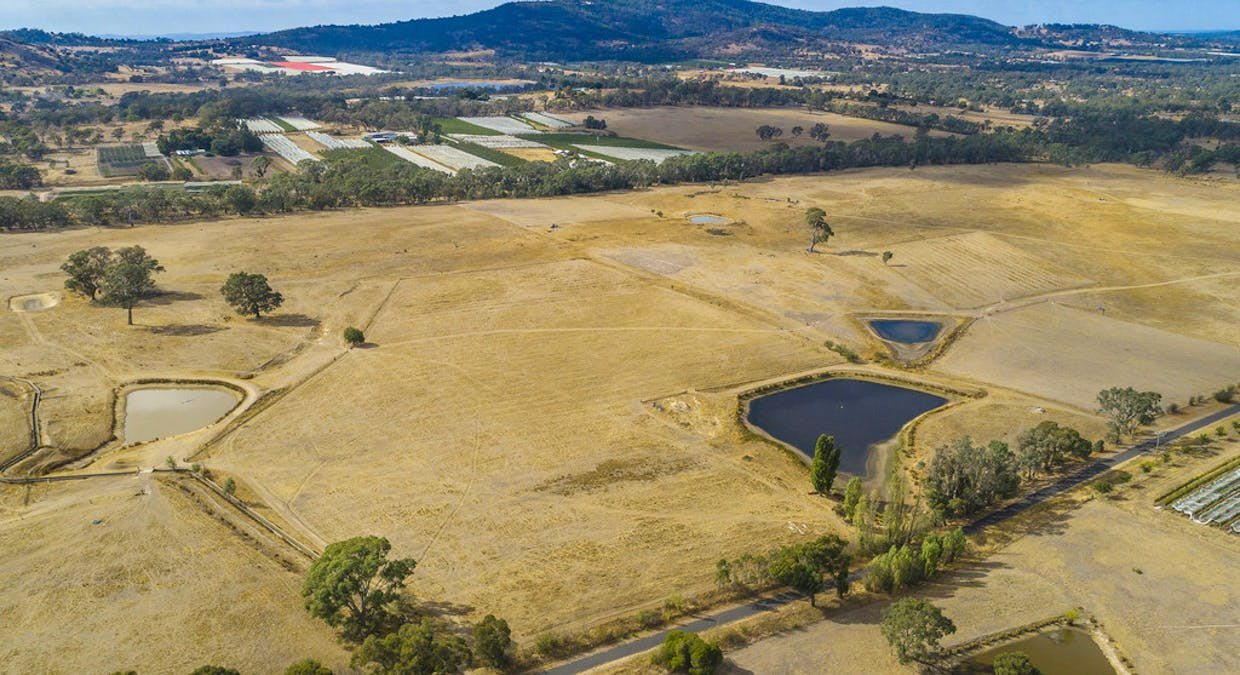 44 Franklings Rd, Harcourt North, VIC, 3453 - Image 12