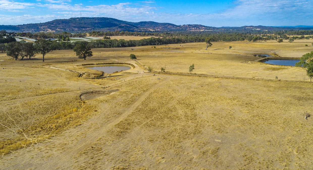 44 Franklings Rd, Harcourt North, VIC, 3453 - Image 7
